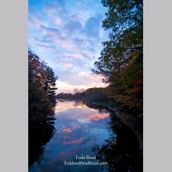 Todd Reed\'s Day 296 of 365