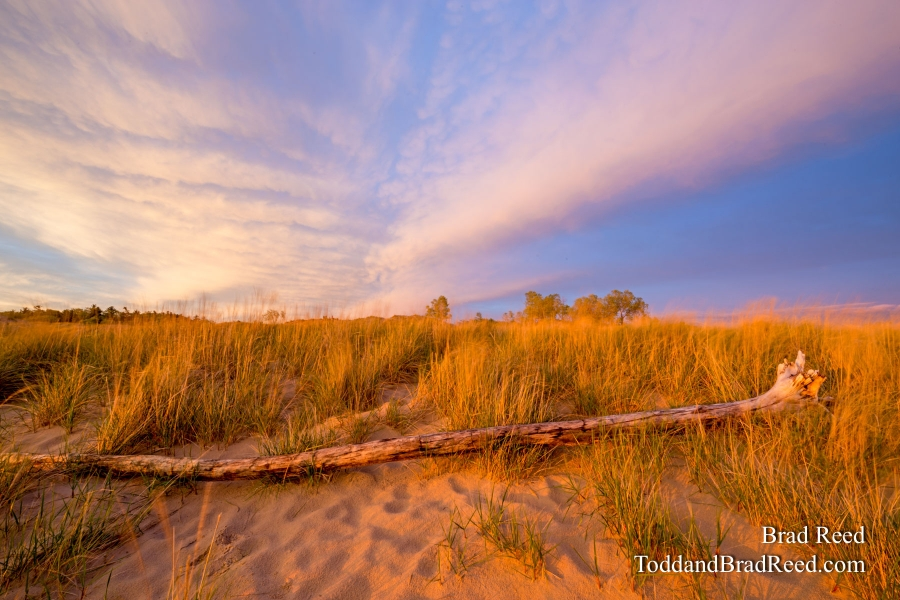 Ludington State Park Workshop (6977)