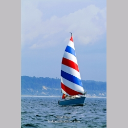 Red White and Blue Sailboat (7121)