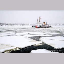 Ice Breaking Coast Guard Biscayne Bay (8277)
