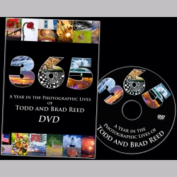 Todd and Brad Reed 365 DVD